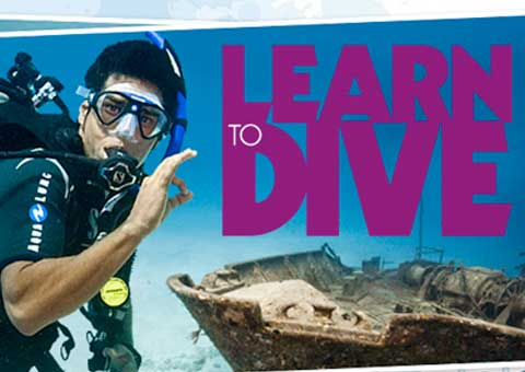 ExpeditionDive_LearnToDive