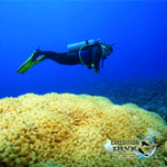 ExpeditionDive_Bouyancy
