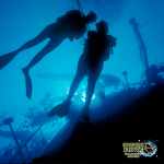ExpeditionDive_Wreck