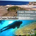 Sydney Marine Life - Cape Solander - Flathead