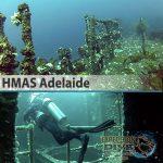 Sydney Marine Life - HMAS Adelaide - Boat Dive