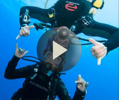 scuba diving sydney & get certified!